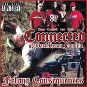 Felony Consequences | CD