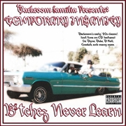 Temporary Insanity: Bitchez Never Learn | CD