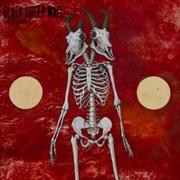 It Begins Again | Vinyl