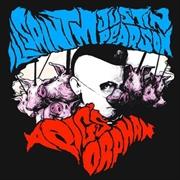 Pigs Orphan   Vinyl