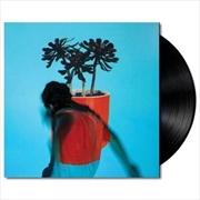 Sunlit Youth | Vinyl