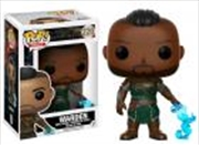 Morrowind Warden | Pop Vinyl