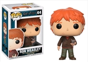 Ron Weasley With Scabbers