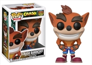 Crash Bandicoot - Crash Bandicoot Pop! Vinyl | Pop Vinyl