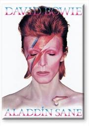 David Bowie Aladdin Sane Flat Magnet