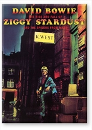 David Bowie Ziggy Stardust Flat Magnet | Merchandise