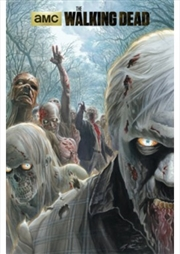 The Walking Dead Zombie Horde | Merchandise