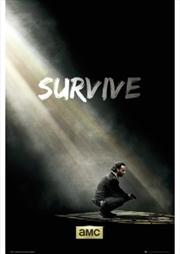 The Walking Dead Survive | Merchandise