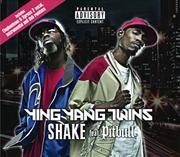 Shake: Xpress 2 Remixes | Vinyl