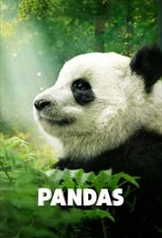 Pandas | DVD