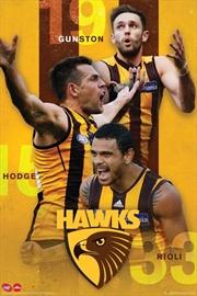 AFL - Hawthorn Hawks Players | Merchandise