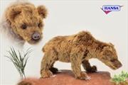 Cave Bear Ursus 34cm