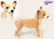 Chihuahua 27cm