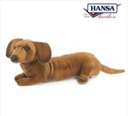 Dachshund Pup 40cm