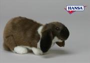 Rabbit German Lop Ear 25cm