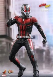 Ant Man 1 To 6 Scale Action