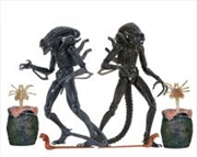 "Aliens - 7"" Ultimate Alien Warrior 1986 Action Figure Assortment"