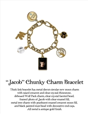 The Twilight Saga: New Moon - Jewellery Chunky Charm Bracelet Jacob | Apparel