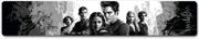 Twilight - Jewellery Slap Bracelet Cullens | Apparel