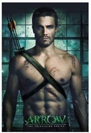 Arrow Pin Up Poster