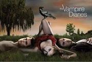 Vampire Diaries - Love Sucks Park