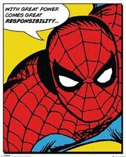 Marvel Comics - Spider-Man Quote