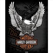 Harley Davidson - Eagle Logo