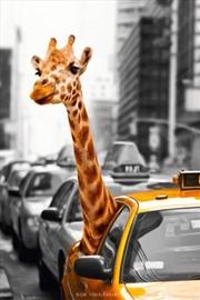 Giraffe-Nyc Taxi Cab