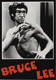 Bruce Lee Fighting Pose Poster