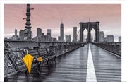 Assaf Frank - Brooklyn Bridge Umbrella