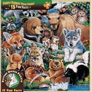 Forest Friends Wood Fun Facts Puzzle 48pc   Merchandise