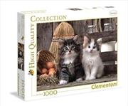 Lovely Kittens | Merchandise
