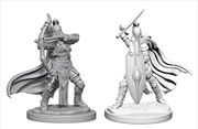 Pathfinder - Deep Cuts Unpainted Miniatures: Female Knights / Gray Maidens | Games