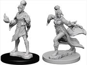 Pathfinder - Deep Cuts Unpainted Miniatures: Elf Female Sorcerer   Games