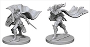 Pathfinder - Deep Cuts Unpainted Miniatures: Elf Female Paladin   Games