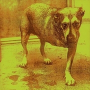 Alice In Chains | CD