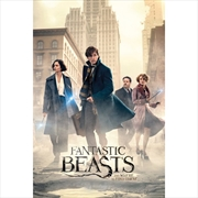 Fantastic Beasts and Where to Find Them Street