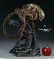 Alien - Alien Warrior Mythos Maquette