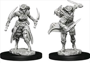 Dungeons & Dragons - Nolzur's Marvelous Unpainted Minis: Tiefling Female Rogue | Games