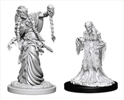 Dungeons & Dragons - Nolzur's Marvelous Unpainted Minis: Green Hag & Night Hag