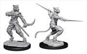 Dungeons & Dragons - Nolzur's Marvelous Unpainted Minis: Male Tabaxi Rogue