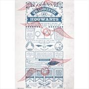 Harry Potter Quidditch | Merchandise