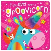 If You Ever Meet a Groovicorn | Board Book