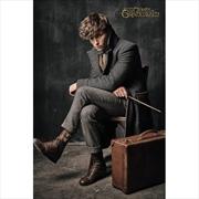Fantastic Beasts 2 Newt Scamander | Merchandise