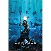 DC Comics Aquaman One Sheet | Merchandise