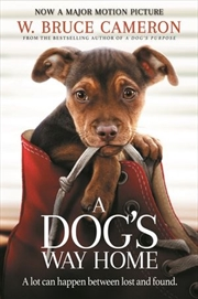 A Dogs Way Home | Paperback Book
