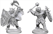 Dungeons & Dragons - Nolzur's Marvelous Unpainted Minis: Dragonborn Male Paladin | Games