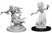 Dungeons & Dragons - Nolzur's Marvelous Unpainted Minis: Wraith & Specter   Games