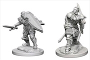 Dungeons & Dragons - Nolzur's Marvelous Unpainted Minis: Human Male Paladin | Games