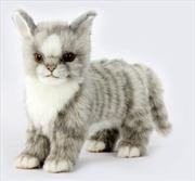 Kitten Gray Standing 22cm L   Toy
